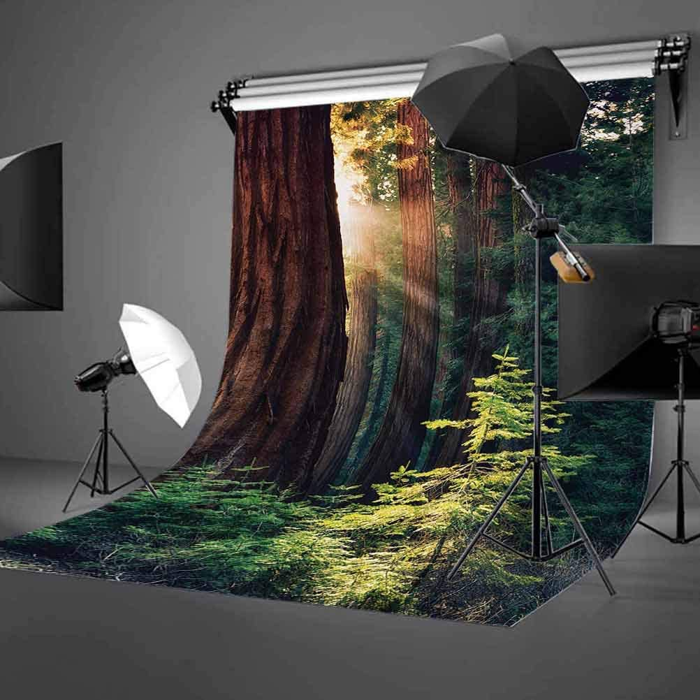 6x8 FT Backdrop Photographers,Morning Sunlight in Wilderness Yosemite Sierra Nevada United States Nature Background for Kid Baby Boy Girl Artistic Portrait Photo Shoot Studio Props Video Drape Vinyl