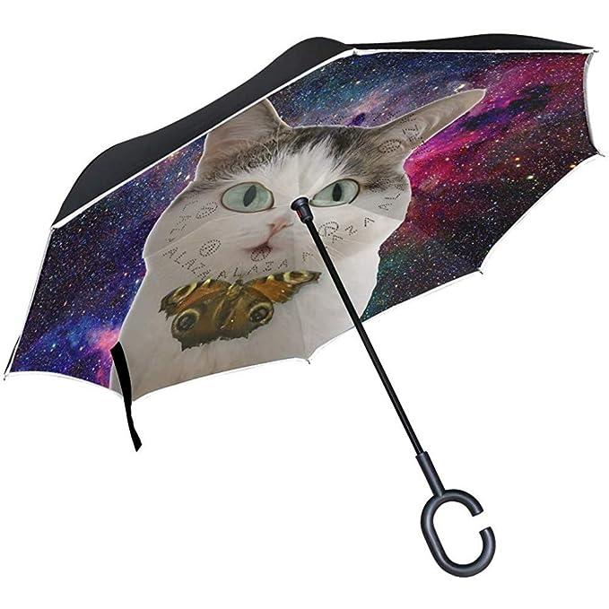 Merle House Cute Funny Cat Nebula Galaxies Paraguas invertido ...