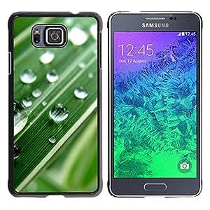 Paccase / SLIM PC / Aliminium Casa Carcasa Funda Case Cover - Green Water Drop Macro Leaf - Samsung GALAXY ALPHA G850
