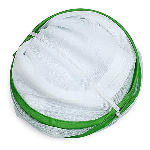 kuygdvd-UK Invernadero Pequeño, Invernadero Cultivo Anti Mosquito ...