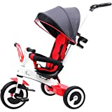 R for Rabbit Tiny Toes Magna - The Luxurious and Exclusive Tricycle for Kids -Baby with Magnesium Alloy Structure (Red White)
