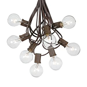 G40 Patio String Lights with 25 Clear Globe Bulbs - Hanging Garden String Lights - Vintage Backyard Patio Lights - Outdoor String Lights - Market Cafe String Lights - Brown Wire - 25 Foot