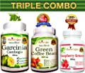 Triple Combo Garcinia Cambogia + Green Coffee Bean + Raspberry Ketone Extracts from Affordable Natural Health - All Natural 100% Pure - Non-GMO - 180 Capsules - Diet Pills Weight Loss Supplement