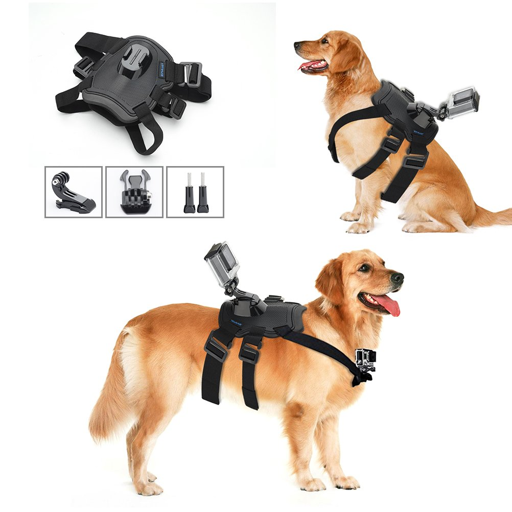 Pieviev Dog Harness Adjustable Chest Strap Mount Belt Fetch Mount for GoPro HERO 6/5/5 Session/4 Session/4/3+/3/2/1, Xiaoyi and Other Action Cameras (Dog Harness)