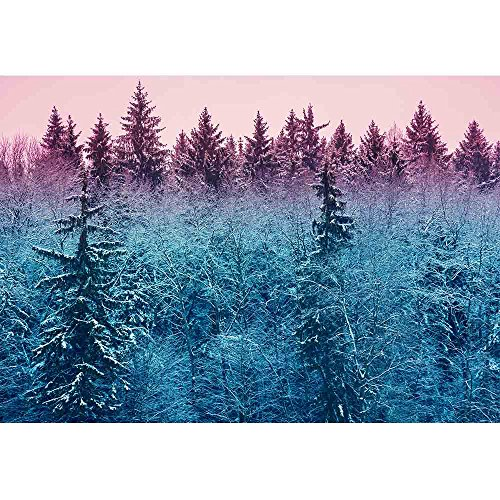 wall26 - Fir Forest in Early Morning - Removable Wall Mural   Self-Adhesive Large Wallpaper - 100x144 inches by wall26 (Image #1)
