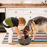 Decyam Pet Fun Feeder Dog Bowl Slow Feeder, Slow