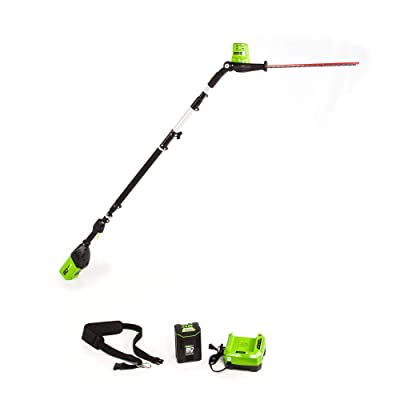 Greenworks 20-Inch 80V Cordless Pole Hedge Trimmer, 20 inches, PH80B210