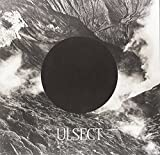 Ulsect