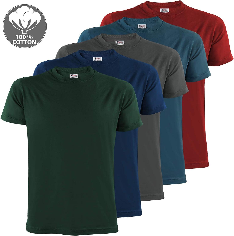 Plain Sizes S M L XL XXL 3XL 4XL ALPIDEX Mens T-Shirts Pack of 5 with Round Neck
