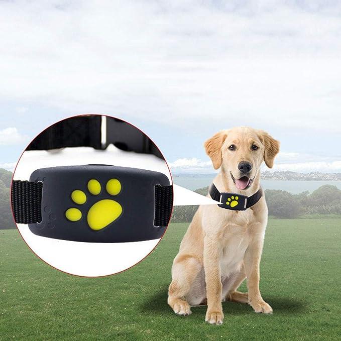 QPZYB Localizador GPS Smart Pet Locator, Pet Anti-Lost Dispositivo, Wireless Smart Tracking Phone View: Amazon.es: Productos para mascotas