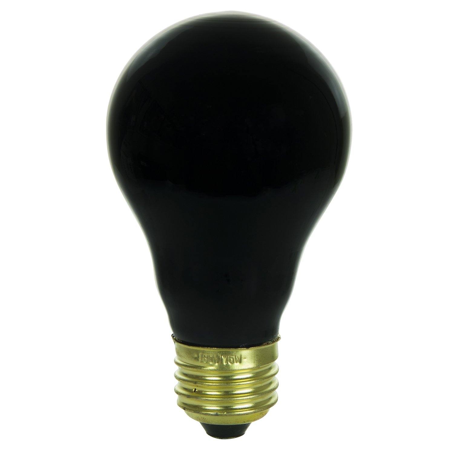 light photo bulb free royalty black background on white stock icon vector