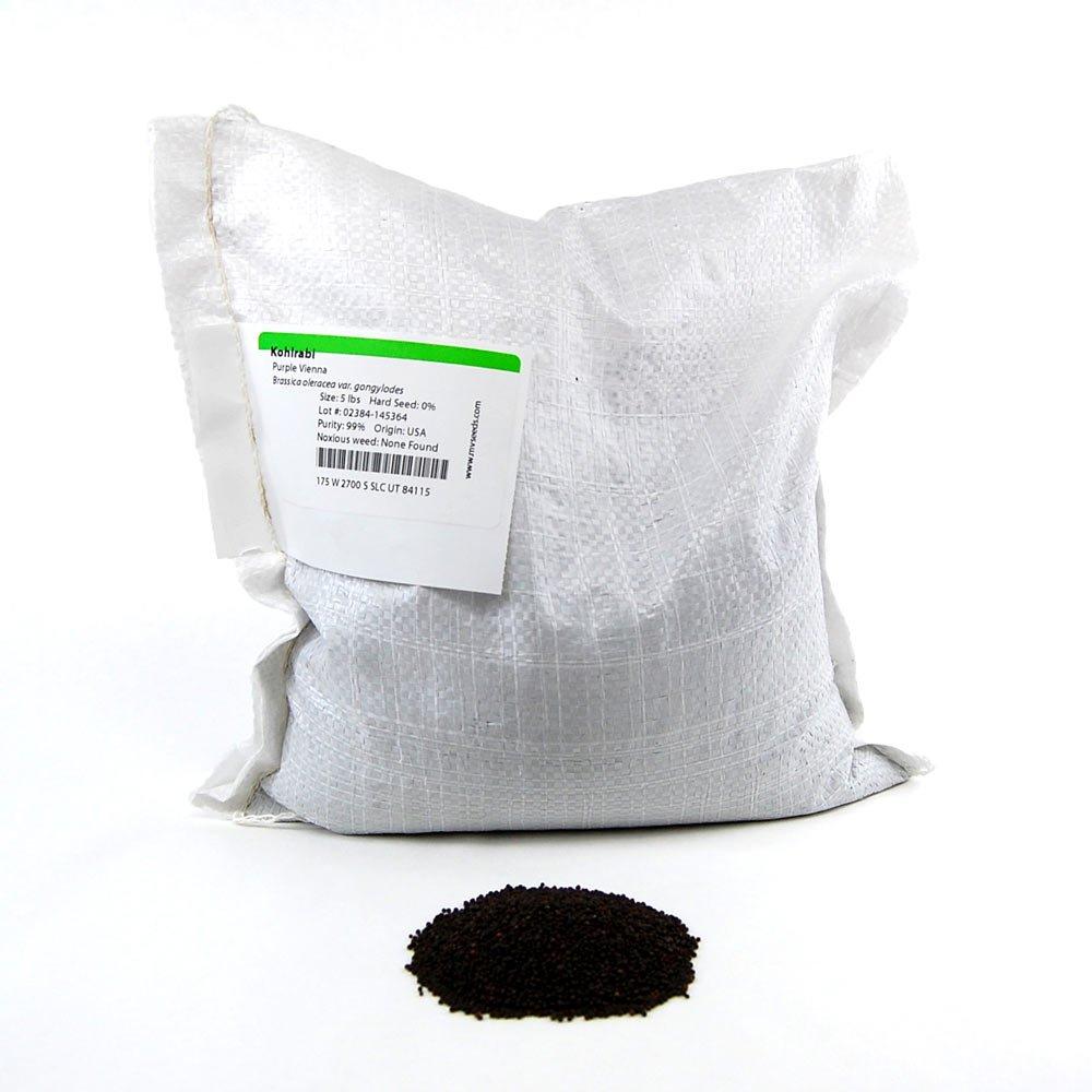 Purple Vienna Kohlrabi Seeds: 5 Lb - Non-GMO Vegetable Gardening & Micro Greens Growing Seed