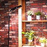 Dommia Floor Lamp LED Grow Lights, 35W Floor Stand