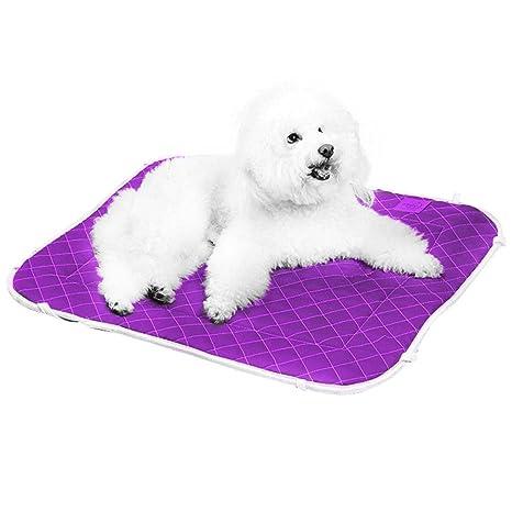 Binrrio - Caseta de Mascota Suave Lavable, multifunción, 2 en 1, Cama para