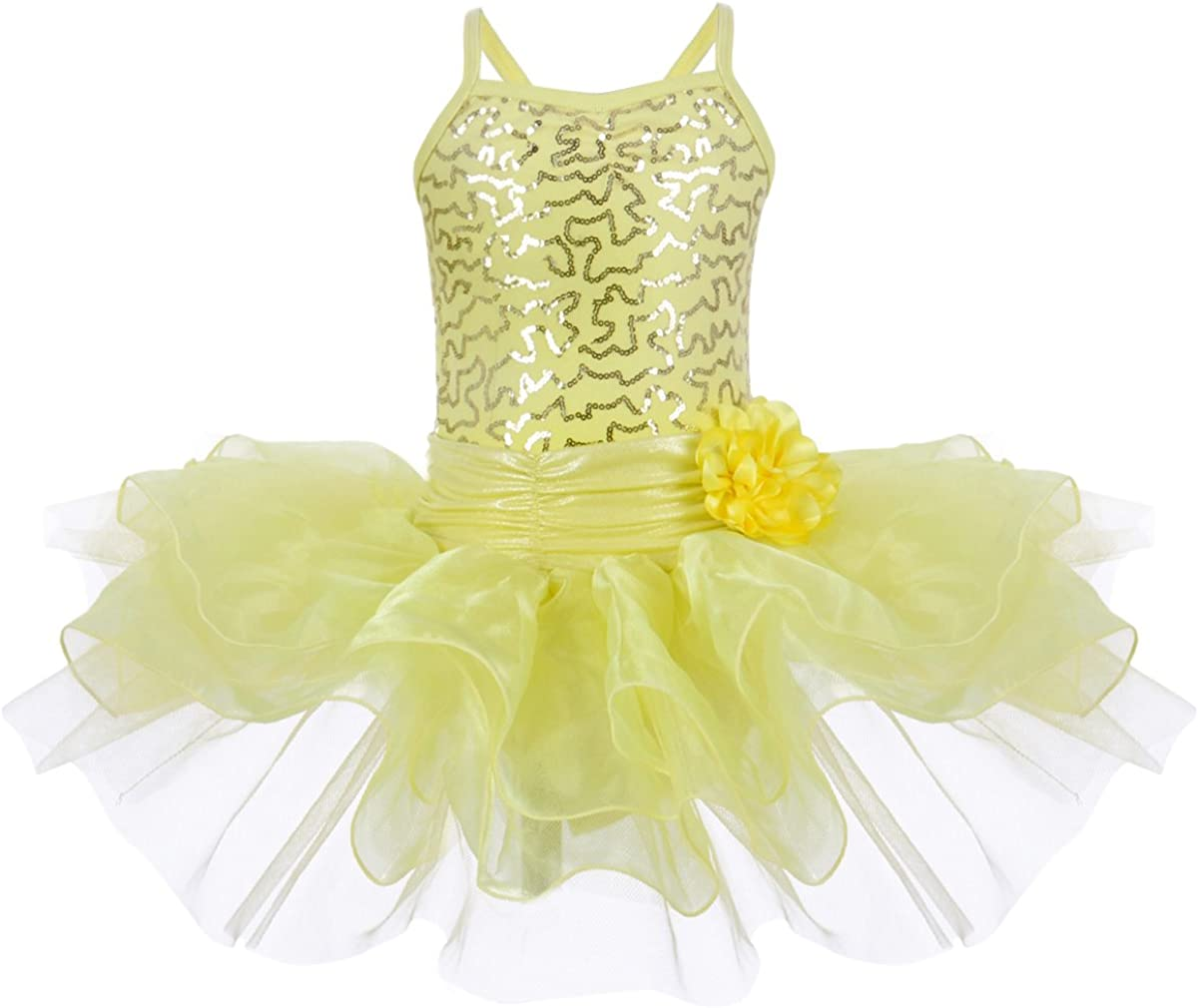 OwlFay Vestido de Ballet para Niña Ropa de Baile Disfraces de ...
