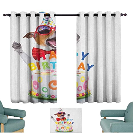 Amazon.com: Cortina de pared para decoración de cumpleaños ...