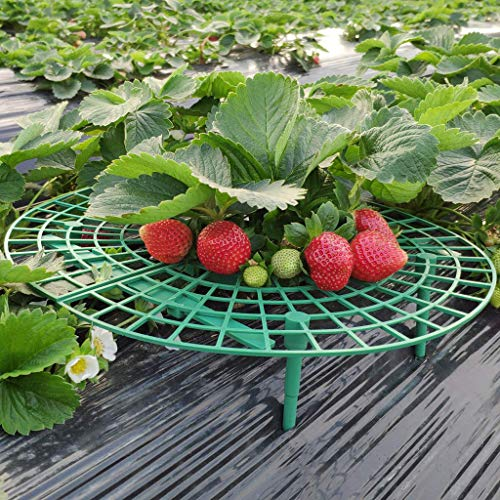 Nesee Handy Strawberry Supports for Your Garden,Keep Strawberries Off Rot in The Rainy Days,Great for Keeping Fruit Elevated to Avoid Ground Rot (5pcs)