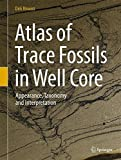 img - for Atlas of Trace Fossils in Well Core: Appearance, Taxonomy and Interpretation book / textbook / text book