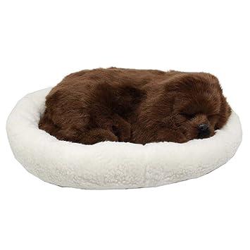 Perro cachorro que respira Peluche de juguete con cama, 25cm (Perro de café): Amazon.es: Juguetes y juegos
