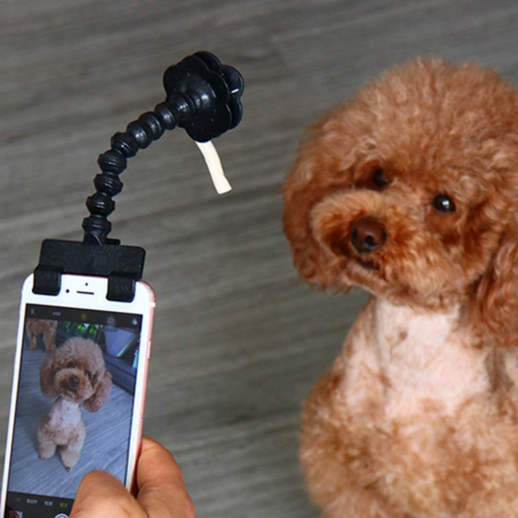 Hibote Selfie Bâton pour Animaux Domestiques, Portable Smartphonet Sick Selfie Pet Selfie Chien Bâton Chien Chat Photographie Animaux Selfie Bâton Noir/Blanc hibote Network technology Ltd