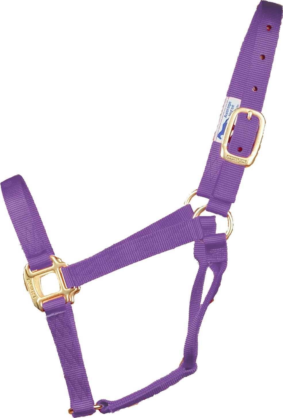 Hamilton 1-Inch Nylon Quality Halter for 300 to 500-Pound Horse, Yearling, Lavender
