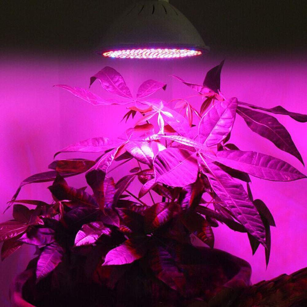 E27 200 LED Grow Light Bulb for Indoor Plants, Grow Bulbs Full Spectrum Grow Lights for Growing Plants Lamp, Vegetables and Flowers, Plant Growing Lights Bulbs for Hydroponics Greenhouses Gardening