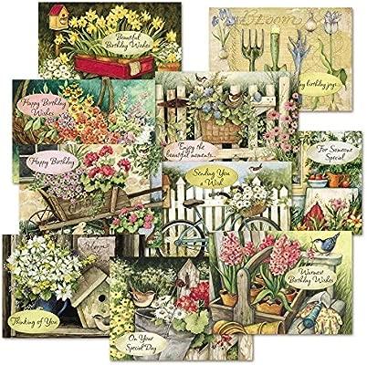 Susan Winget cumpleaños tarjetas de felicitación Value Pack ...