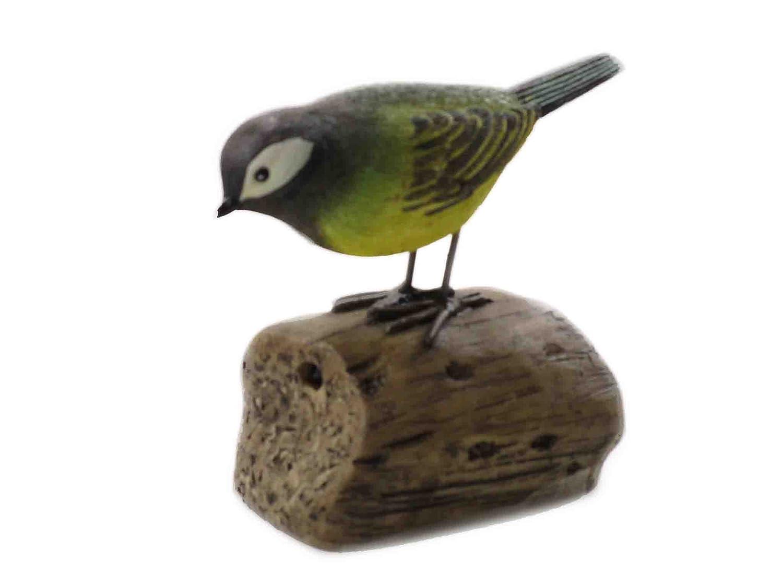 D/étecteur de mouvement Oiseaux