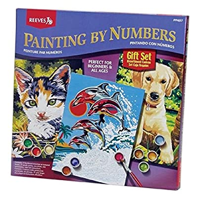 Reeves Painting By Numbers Gift Set: Arts, Crafts & Sewing