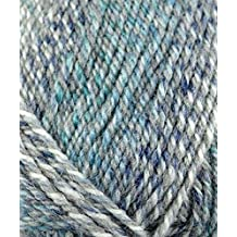 Plymouth (1-Pack) Encore Worsted Colorspun Yarn Oceandrift 7991-1P