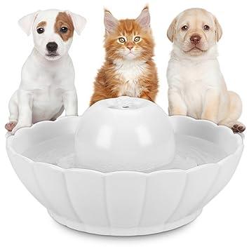 Hommii Fuente Bebedero Cerámico para Gato/Perro Mascotas Silencio 2.1L Dispensador de Agua Automático con Filtro Pet Water Fountain Drinking Bowl: ...