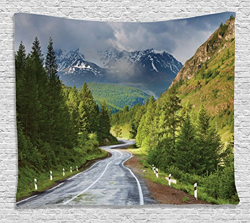 Scene Wall Tapestry (Nature Tapestry Wall Hanging by Ambesonne, Mountain Landscape with Road Cloudy Sky Pine Trees Forest Summer Rainy Day Scene, Bedroom Living Room Dorm Decor, 80 W X 60 L Inches, Green Gray Brown)