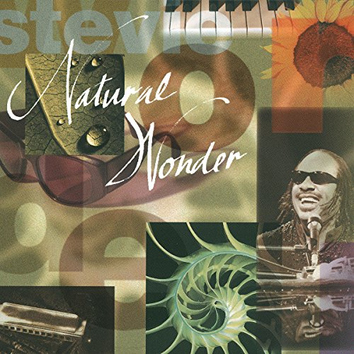 Stevie Wonder - Natural Wonder Live In Concert - Zortam Music