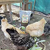 10lbs Bulk Non-GMO Dried Mealworms for