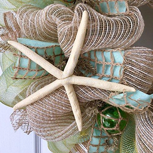 Chevron-Beach-Wreath-with-Real-Starfish-and-Sand-Dollars-Handmade-Deco-Mesh