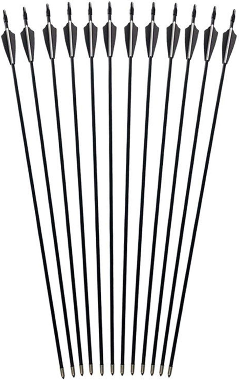 "GPP 28"" Fiberglass Archery Target Arrows - Practice Arrow or Youth Arrow for Recurve Bow - 12 Pack, Black Vanes : Sports & Outdoors"