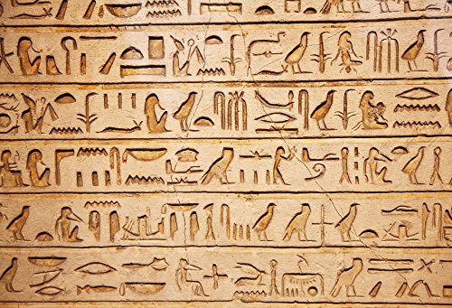 OFILA Hieroglyphs on The Wall Backdrop 6x4ft Ancient Egyptian History Symbol Traditional Culture Pharaoh Antiquity Alphabet Carving Archaeology Civilisation Art Writing Tomb Burial Background Props ()