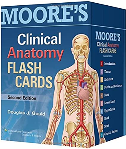 Moores Clinical Anatomy Flash Cards 9781451173352 Medicine