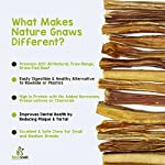 Nature Gnaws Small Bully Sticks - 100% Natural Grass-Fed Free-Range Premium Beef Dog Chews - Single Ingredient & Long Lasting Chew Treats for Dogs 10