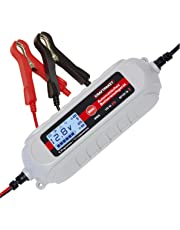 Dino KRAFTPAKET 4A-6V/12V Batterieladegerät mit Batterietester IP65 für KFZ Auto Motorrard Quad ATV Boot
