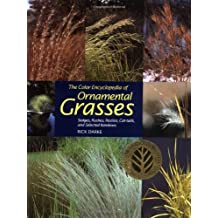 Color Encyclopedia Of Ornamental Grasses: Sedges, Rushes, Restios, Cat-Tails and Selected Bamboos