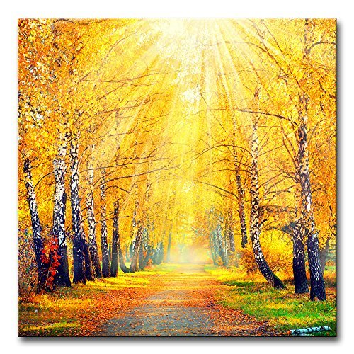 River Birch Leaves (Modern Canvas Painting Wall Art The Picture For Home Decoration Beautiful Autumn Fall Scene Autumnal Park Birch Trees And Leaves In Sun Rays Landscape Forest Print On Canvas Giclee Artwork For Wall Decor)