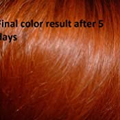 Amazoncom Hannah Natural 100 Pure Henna Powder 100 Gram Hair