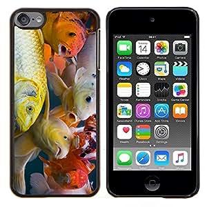 Stuss Case / Funda Carcasa protectora - Colorido pescados de Koi - Apple iPod Touch 6 6th Touch6