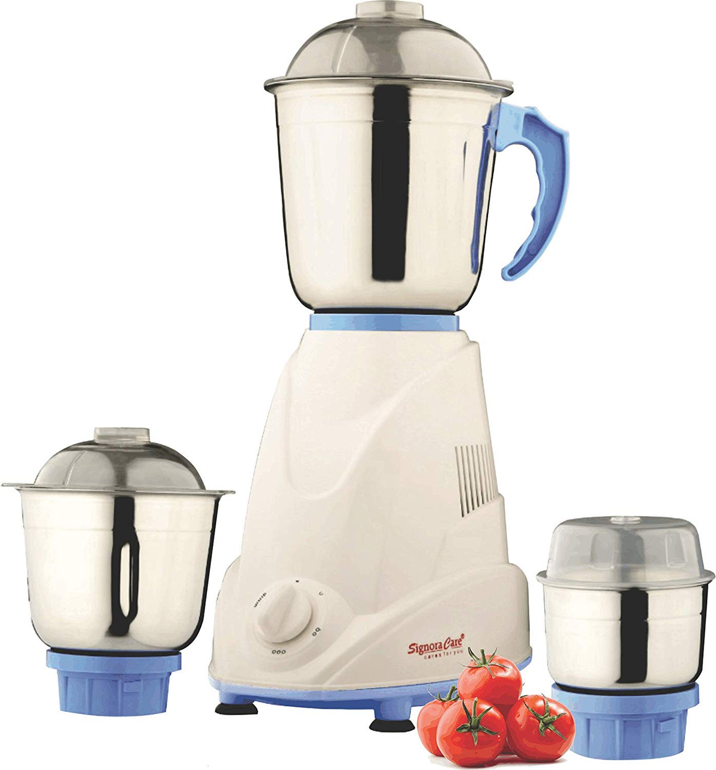 Best Mixer Grinder under 1000 Rs in India - Editor's Choice 1