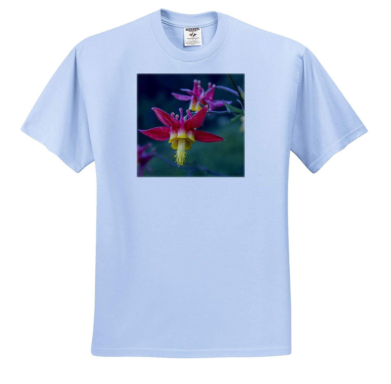 Flowers Crimson Columbine Blooming in Mt ts/_315141 Rainier National Park - Adult T-Shirt XL 3dRose Danita Delimont