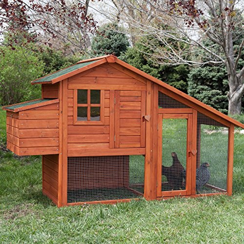 boomer-george-deluxe-4-chicken-coop-with-run