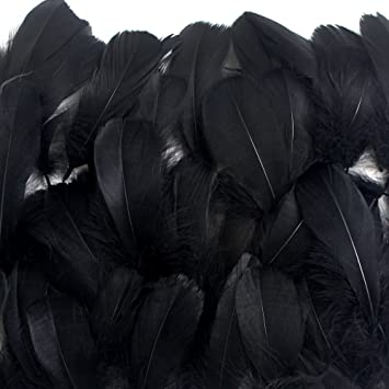 Amazon Com Coceca 300pcs Black Feathers For Various Birthday Party