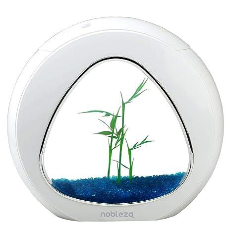 Nobleza - Acuario pecera de diseño Moderno con Ventana de Cristal y luz LED, Color