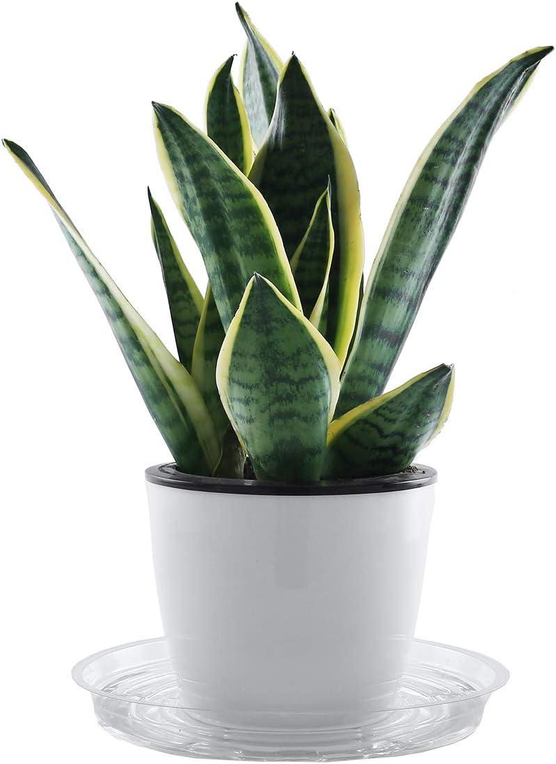 Plastic Saucer Base Round Plant Flower Pot Plate Water-Drip Tray Planter Garden